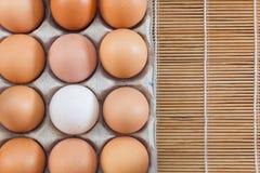Uovo del pollo & uovo dell'anatra Immagini Stock Libere da Diritti