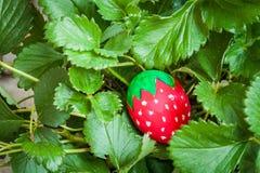 Uovo dell'estere della fragola in fragola Fotografia Stock Libera da Diritti