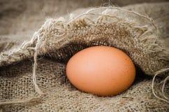 Uovo della natura morta Fotografie Stock Libere da Diritti