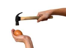Uovo della tenuta di due mani con il martello Immagini Stock