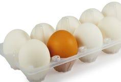 Uovo di Brown fra le uova bianche in casella Immagine Stock Libera da Diritti