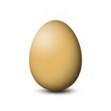 Uovo di Brown su priorità bassa bianca Immagine Stock