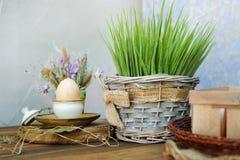 Uovo di gallina del ` s dell'agricoltore, erba fresca Immagine Stock Libera da Diritti