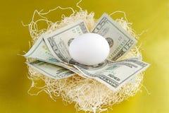 Uovo di nido Fotografia Stock