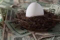 Uovo di nido Immagine Stock