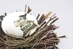 Uovo di nido 3 Immagini Stock