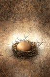 Uovo di nido Fotografie Stock Libere da Diritti