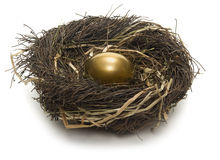 Uovo di nido Immagini Stock Libere da Diritti