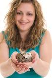 Uovo di nido Immagini Stock
