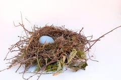 Uovo di nido Immagine Stock Libera da Diritti
