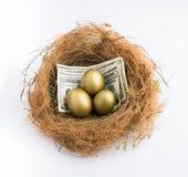 Uovo di nido con i dollari US Fotografia Stock