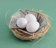 Uovo di nido con soldi Fotografia Stock Libera da Diritti