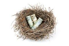 Uovo di nido dei soldi Immagine Stock