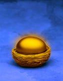 Uovo di nido dell'oro Fotografie Stock Libere da Diritti