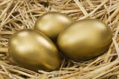 Uovo di nido dell'oro Immagini Stock