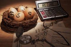 Uovo di nido di pensionamento Fotografie Stock Libere da Diritti