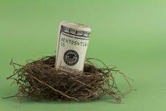 Uovo di nido di pensione Fotografia Stock