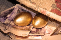 Uovo di nido dorato Immagine Stock