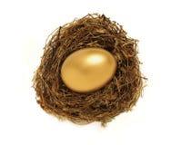 Uovo di nido dorato che rappresenta il risparmio di pensione Fotografia Stock