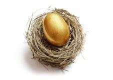 Uovo di nido dorato di risparmio di pensione Fotografia Stock