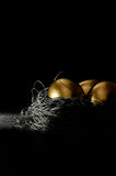 Uovo di nido finanziario II Fotografia Stock Libera da Diritti