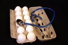 Uovo di nido sano Fotografia Stock Libera da Diritti