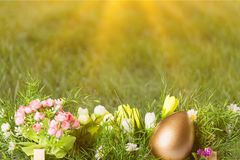 Uovo di Pasqua Fotografia Stock Libera da Diritti