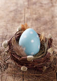 Uovo di Pasqua blu in nido Fotografie Stock Libere da Diritti