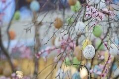 Uovo di Pasqua colorato Immagini Stock