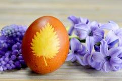Uovo di Pasqua colorato con i fiori della pelle e della molla di cipolla Fotografia Stock