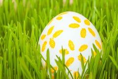 Uovo di Pasqua colorato in erba Immagine Stock Libera da Diritti