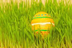 Uovo di Pasqua colorato in erba Fotografia Stock Libera da Diritti