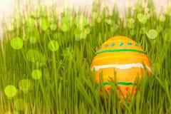 Uovo di Pasqua colorato in erba con boke Fotografia Stock Libera da Diritti
