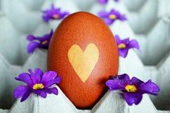 Uovo di Pasqua colorato naturalmente con i fiori della buccia e della molla della cipolla Immagini Stock