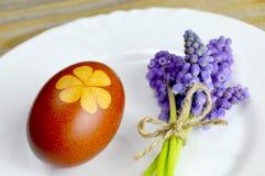 Uovo di Pasqua colorato naturalmente con i fiori della pelle e della molla di cipolla Immagini Stock