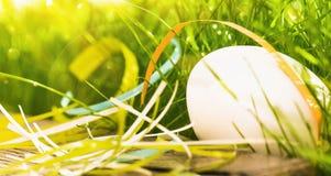 Uovo di Pasqua con erba verde Fotografia Stock