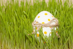 Uovo di Pasqua con il bowknot nell'erba di primavera Fotografia Stock