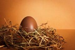 Uovo di Pasqua del cioccolato Fotografie Stock Libere da Diritti