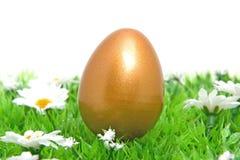 Uovo di Pasqua dorato del pollo su erba Immagini Stock Libere da Diritti