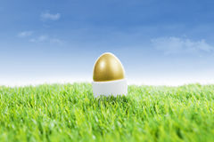 Uovo di Pasqua dorato su erba Fotografie Stock