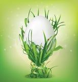 Uovo di Pasqua e portauovo di erba Fotografia Stock Libera da Diritti