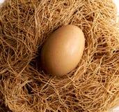 Uovo di Pasqua e primo piano organici del nido immagini stock