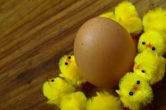 Uovo di Pasqua e pulcini gialli Immagini Stock Libere da Diritti