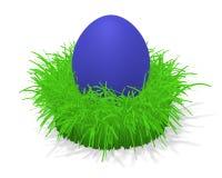 Uovo di Pasqua In erba Fotografia Stock