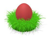 Uovo di Pasqua In erba Fotografie Stock