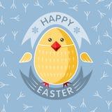 Uovo di Pasqua Felice Fotografie Stock Libere da Diritti