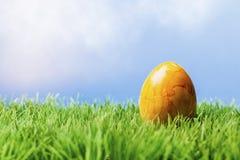 Uovo di Pasqua giallo in erba, fondo blu Fotografia Stock
