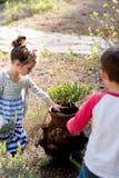 Uovo di Pasqua Hunt Outdoors nell'Oregon Immagine Stock