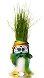 Uovo di Pasqua Rinnovabile dell'erba Fotografia Stock
