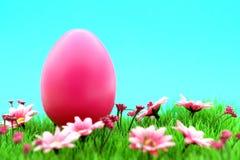 Uovo di Pasqua rosa sul prato con i fiori & il ciano fondo Immagine Stock